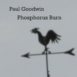 Phosphorus Burn (2006)